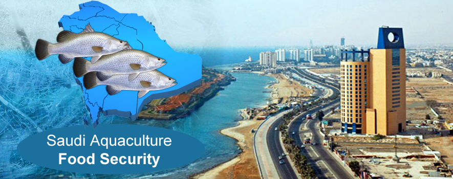 The Importance of Aquaculture for Kingdom of Saudi Arabia