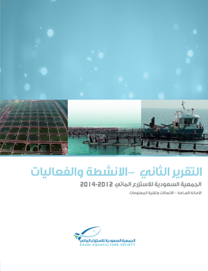 التقرير الثاني -  الانشطة والفعاليات